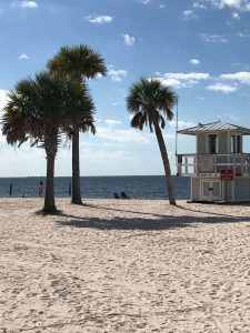 Tarpon Springs Beach